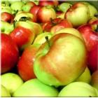Äppelmust, naturell
